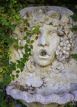 Laurie Perry - Forgotten Garden