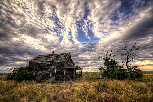 Forgotten House by Matt Hanson