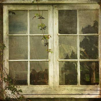 Forgotten by Sally Banfill