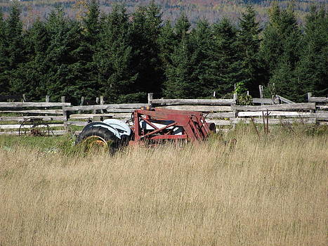 Forgotten Tractor by Sandra Martin