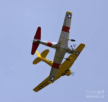 Tim Mulina - Formation Flight