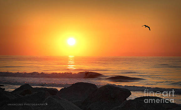 Fort Fisher Sunrise Redux by Phil Mancuso