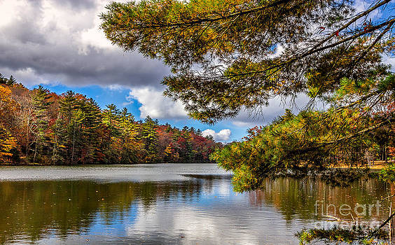 Fort Mountain State Park Lake trail by Bernd Laeschke