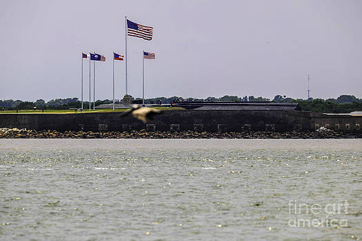 Dale Powell - Fort Sumter