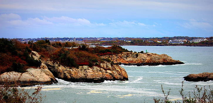 Fort Wetherill by Lisa Jayne Konopka
