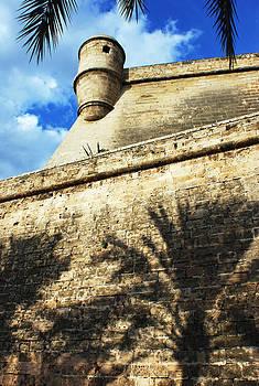Ramunas Bruzas - Fort With Shadows