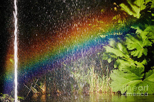 Nick  Biemans - Fountain and rainbow