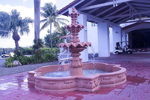 Fountain by Dick Willis