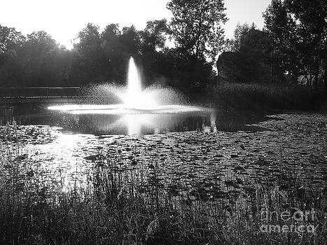 Ginny Gaura - Fountain