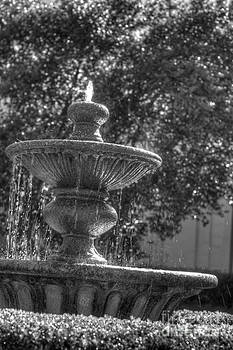 Fountain by Jonathan Harper