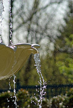 Fountain by Judy Salcedo