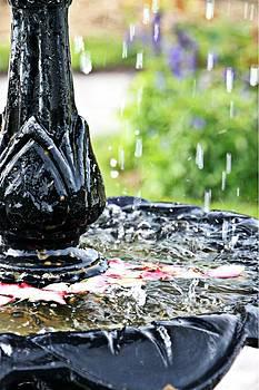 Fountain by Stephanie Leidolph