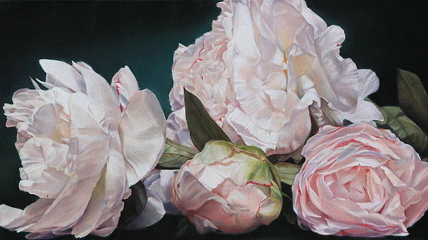 Four Blooms 45 x 80cm by Thomas Darnell