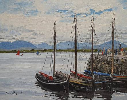 Four Hookers Roundstone Harbour Connemara Ireland by Diana Shephard