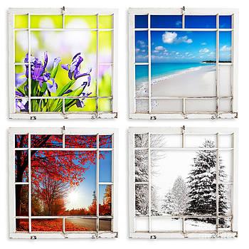 Jo Ann Snover - Four season views throgh grungy painted windows