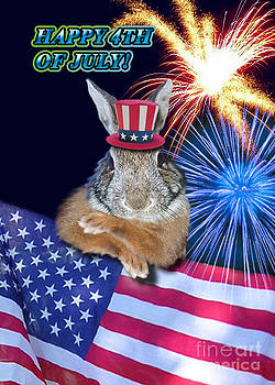 Jeanette K - Fourth of July Bunny Rabbit