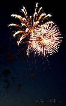 Fourth of July Fireworks by Anne Babineau