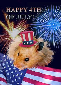 Jeanette K - Fourth of July Hamster