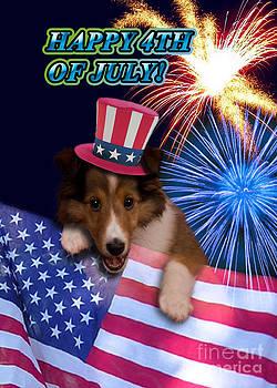 Jeanette K - Fourth of July Sheltie Puppy