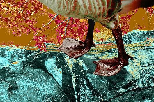 Fowl Weather Friend by Laureen Murtha Menzl