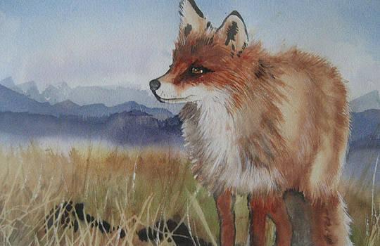 Fox by Stephanie Zobrist