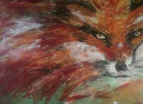 Fox by Thomas Falk