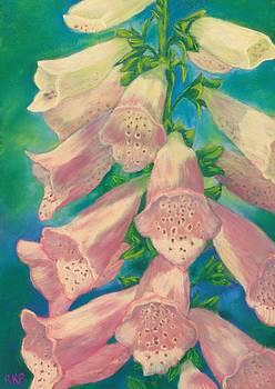 Foxglove by Rebecca Prough