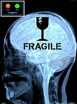 Fragile Substance by Paulo Zerbato