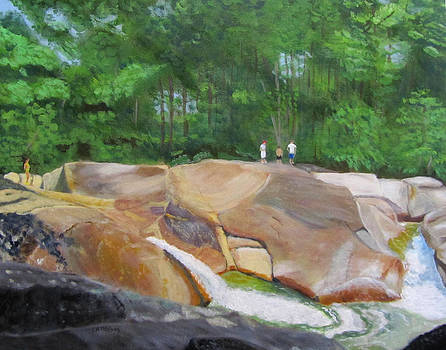 Franconia Falls by Linda Feinberg