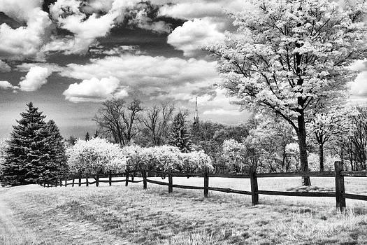 Frankenmuth Roadside by Jeff Holbrook