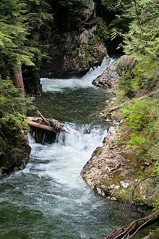 Franklin Falls on Denny Creek in Snoqualmie Forest by Stacey Lynn Payne