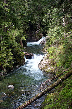 Franklin Falls on Denny Creek in the Snoqualmie Forest by Stacey Lynn Payne
