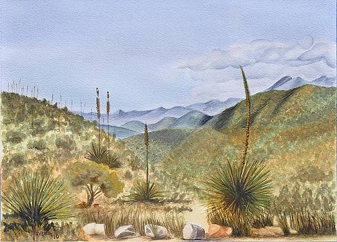 Franklin Mountains by Lorena Bishop