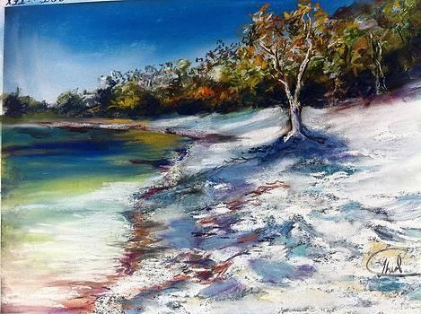 Fraser Island by Shirley Roma Charlton