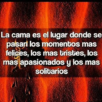 #frases #frase #verdades by Roberto Carlos