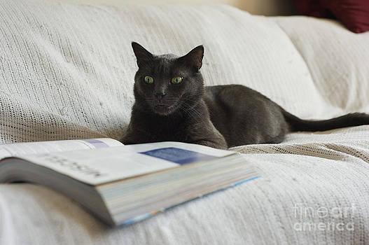 Freddy reading by Tina Osterhoudt