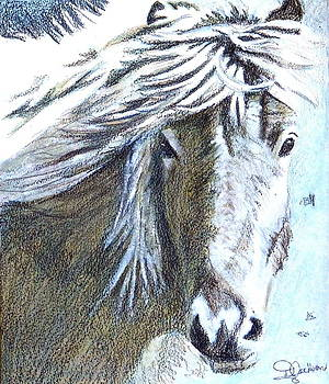 Free Spirit by Dale Jackson