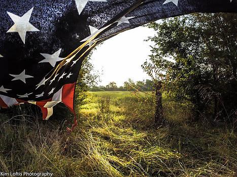 Freedom Soars  by Kim Loftis
