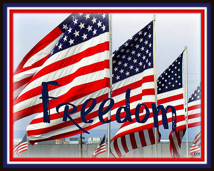 Freedom Waving by Heidi Manly
