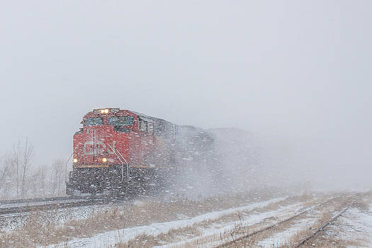 Train in Blizzard Snow by Steve Boyko