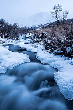 Freezing Over by Tim Newton