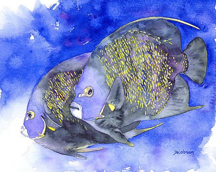 Pauline Jacobson - French Angelfish