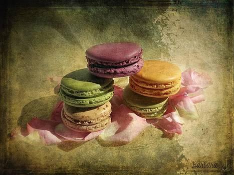 Barbara Orenya - French Macarons 2