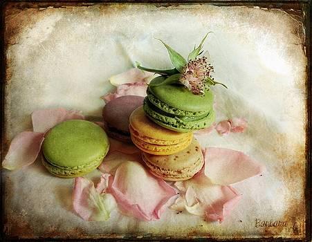 Barbara Orenya - French Macarons