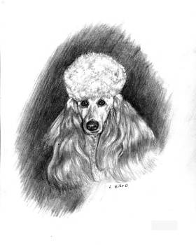 French Poodle by Lou Ortiz
