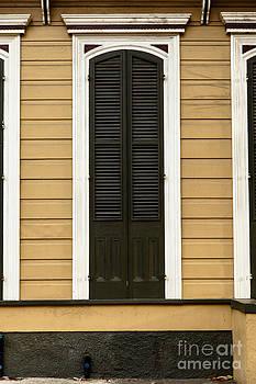 French Quarter Door - 22 by Susie Hoffpauir