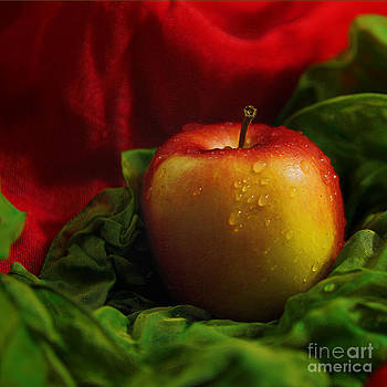 Fresh Apple On Silk by Wobblymol Davis