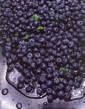 Fresh Blueberries by Errol Wilson