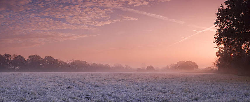 Fresh Cool Morning  by John Chivers