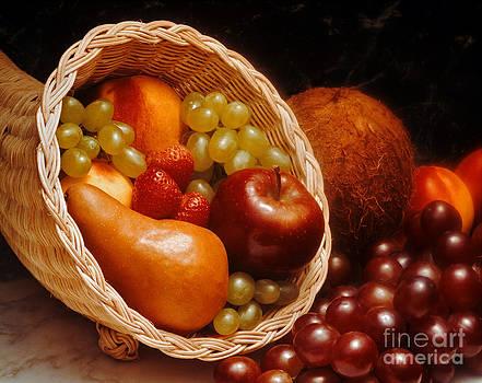 Craig Lovell - Fresh Fruit Cornucopia